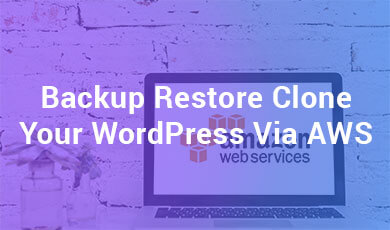 Backup restore clone you wordpress via AWS
