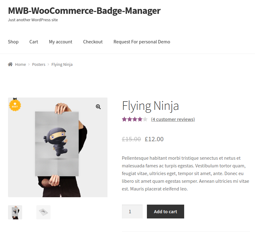 WooCommerce Product Badge Manager-on-single-page