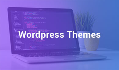 wordpress_themes