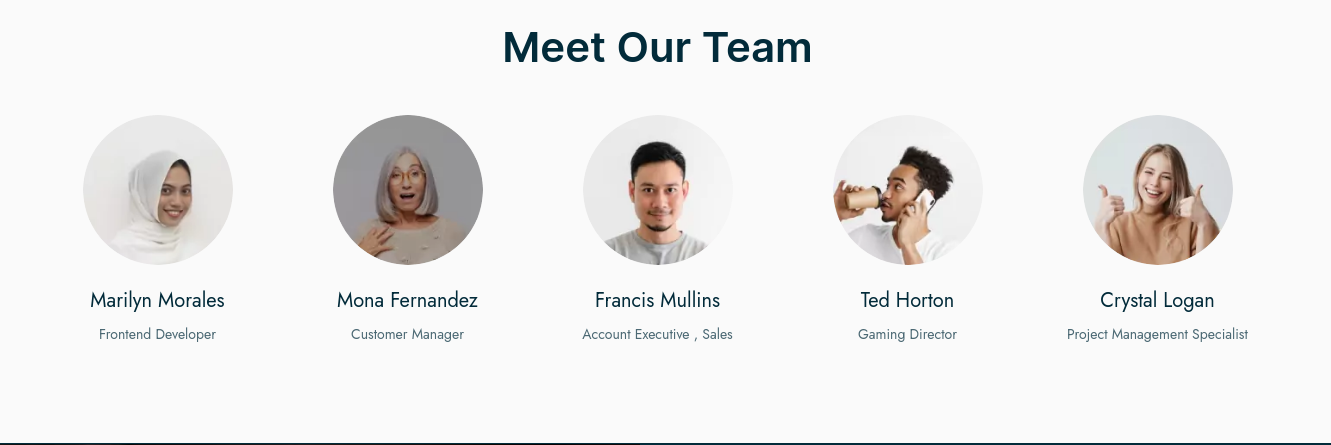 team members- hubspot theme